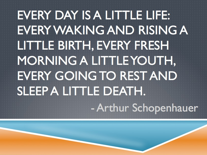 Schopenhauer Quote | Every day is a little Life